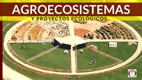 Servicios Agroecosistemas, diseño y construcción de jardines y paisajismo comestible