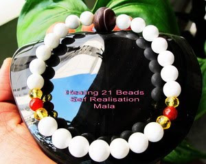 Image result for conch shell mala omhealth