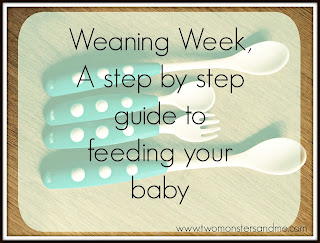 food choices for your little one when weaning
