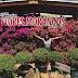 Por aí: 37ª Festa Flores e Morangos de Atibaia