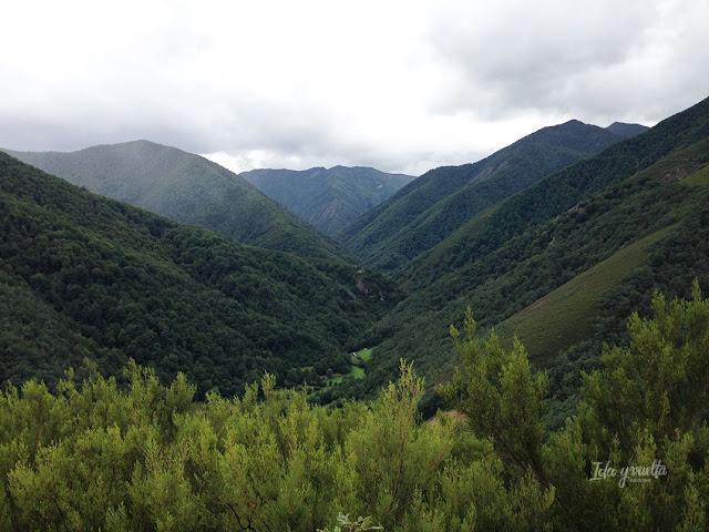 Razones para ir a Cangas del Narcea Reserva de la Biosfera Muniellos