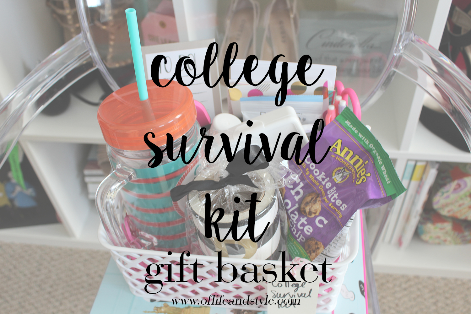 of life and style college survival kit gift basket