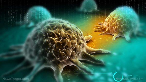 il_vaccino_contro_il_cancro_è_in_realtà_una_immunoterapia