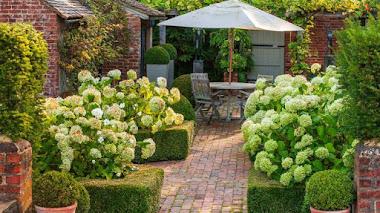 Patio terraza en un jardín de casa de campo inglesa
