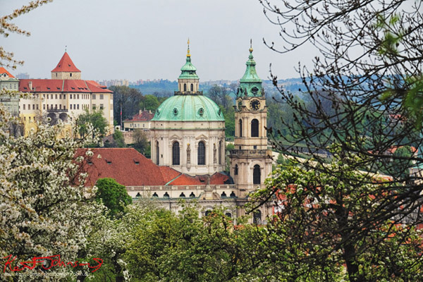 Atmospheric view of a church in Prague from a hillside park with spring fruit tree blooms. Lifestyle photography in Prague by Kent Johnson.