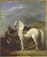 Адыги, История, Кабардинская лошадь, Кабардинская порода лошадей, Черкесская лошадь, Черкесская порода лошадей