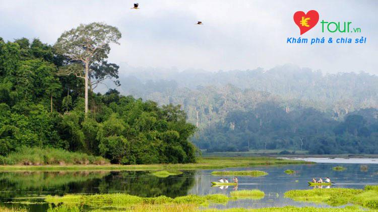 Các điểm du lịch nổi tiếng nhất ở Đồng Nai  - Rừng Nam Cát Tiên