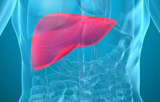 liver diseases,healthy liver,disease related with liver,how treat liver problem,liver ki bimari