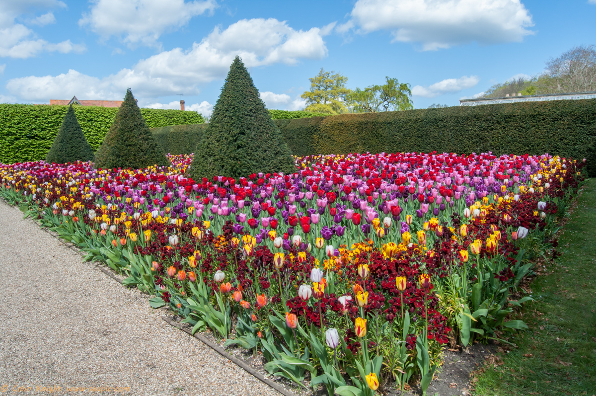 postcards from sussex arundel castle gardens it 39 s all