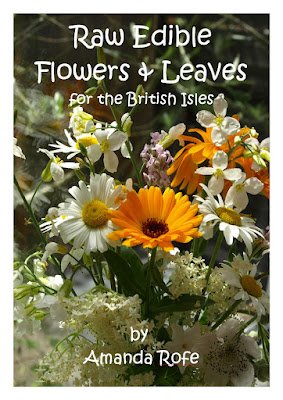 An image of the front cover of Raw Edible Flowers and Leaves by Amanda Rofe.