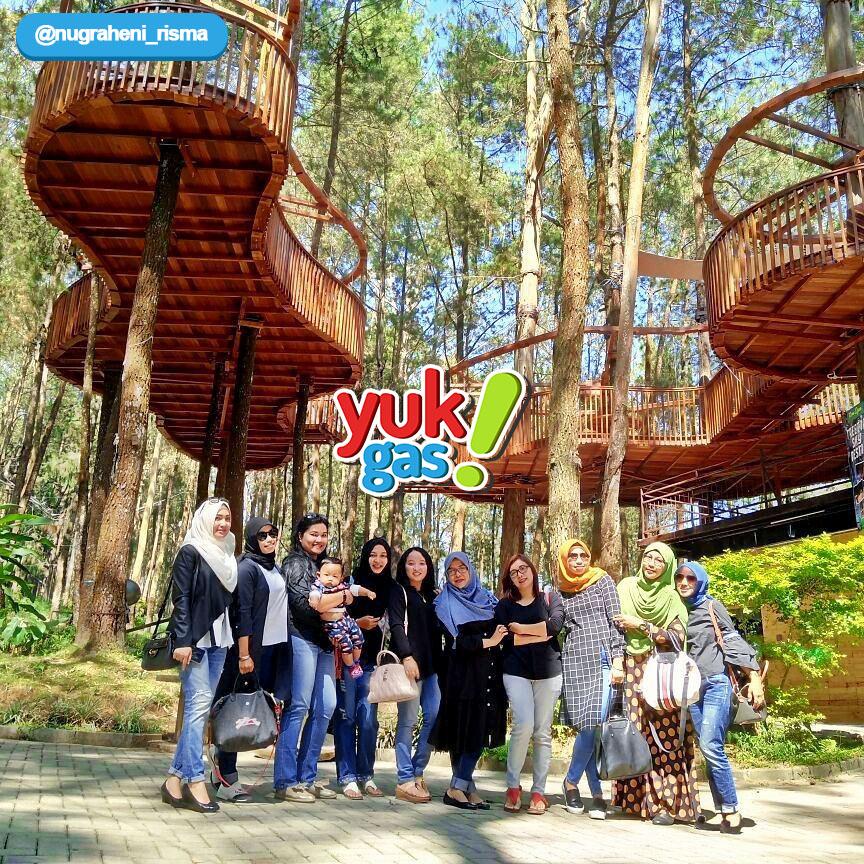 Wisata Kopeng Treetop Adventure Park Salatiga Semarang Yukgas