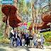 Wisata Kopeng Treetop Adventure Park - Salatiga Semarang