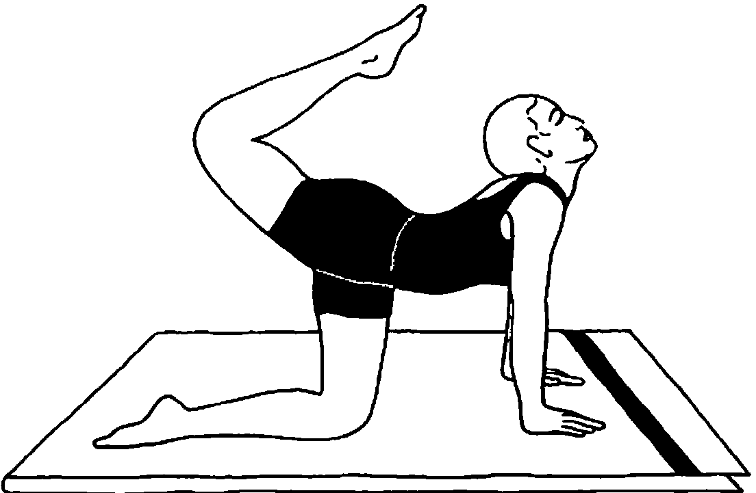 Individual Yoga Instruction Vyaghrasana Tiger Pose