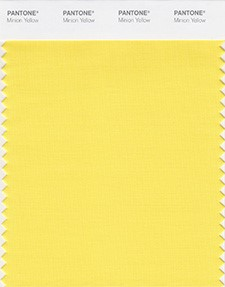 Minion Yellow Color Swatch