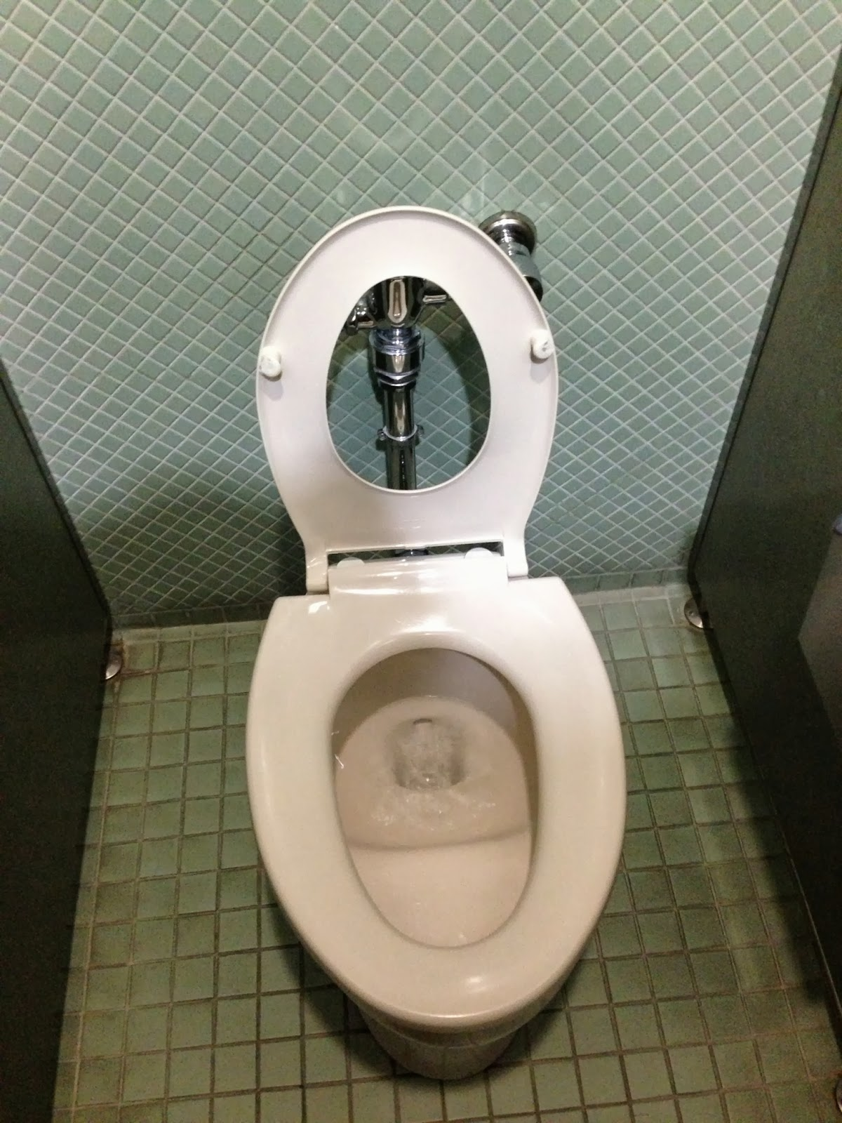 A word about Japanese toilets....... - Cowan Travels