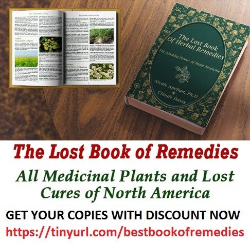 The Lost Book Of Natural Remedies |  Is It Worth A Try? Read This Review Now!