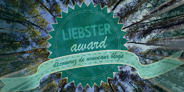 entete-bannière-liebster-awards