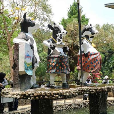 Spot Patung Sapi Cimory