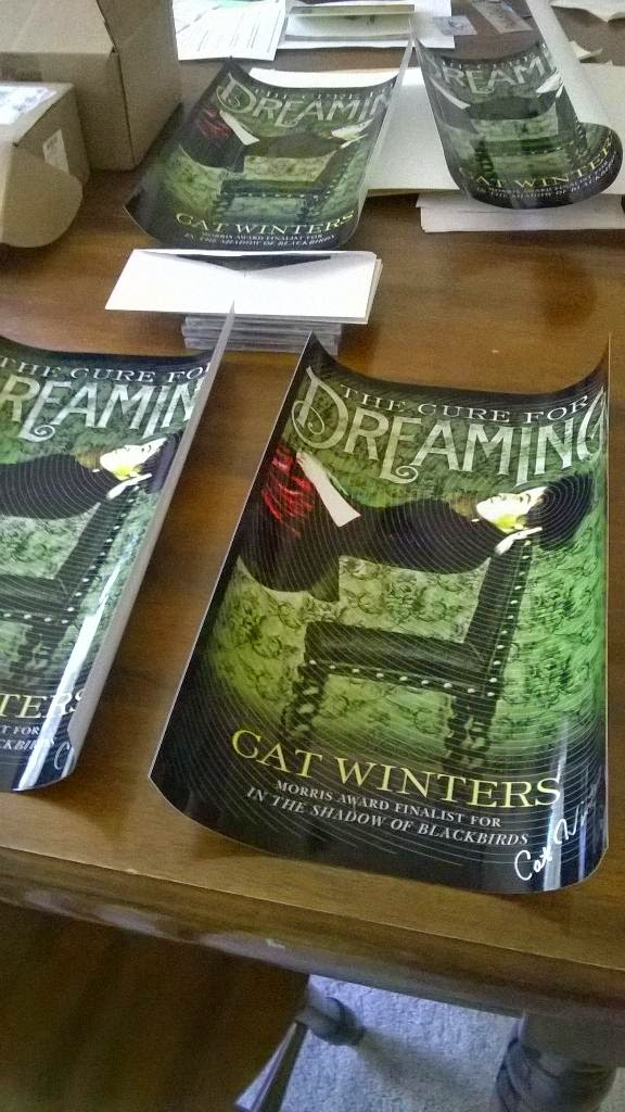 Cat Winters The Cure For Dreaming International Spotted In The Wild