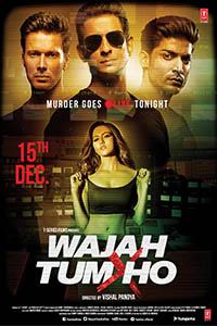 Poster Of Wajah Tum Ho 2016 Hindi 720p HDRip Full Movie Download
