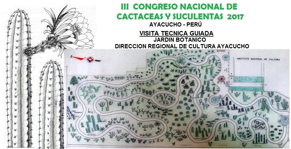 Biodiversidad ayacucho peru congreso nacional de for Cactaceas y suculentas