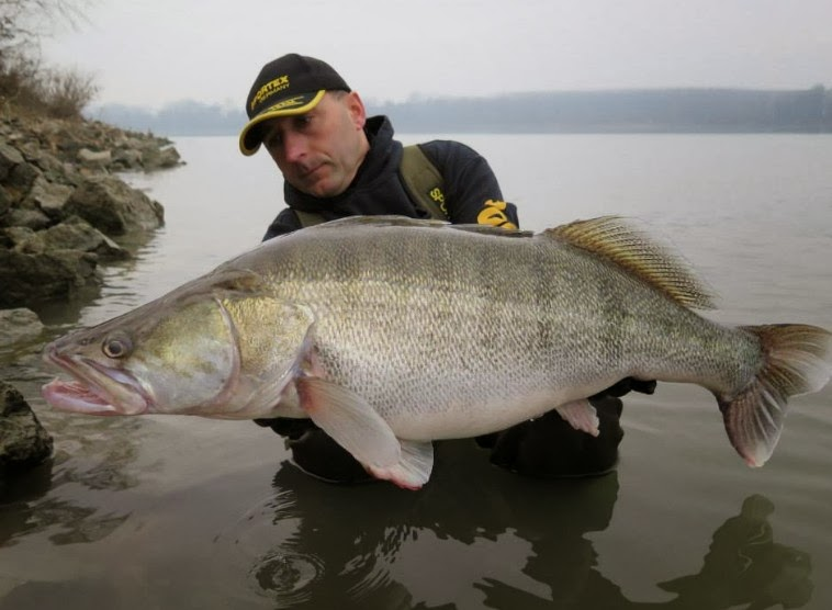 world record biggest fish ever caught big huge fishes records