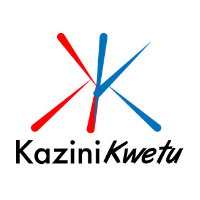 Job Opportunity at KaziniKwetu Ltd