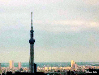 TOKIO DESDE LAS ALTURAS.