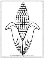 corn coloring book