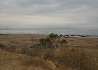Morro Rock and the bay, view near Cayucas, California