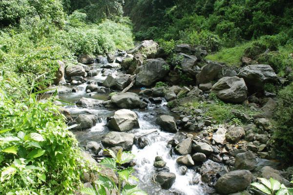 Jalan-menuju-Air-Terjun-Madakaripura