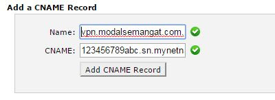 Setting Custom Domain Untuk IP Cloud Mikrotik