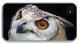 iphone case European eagle owl