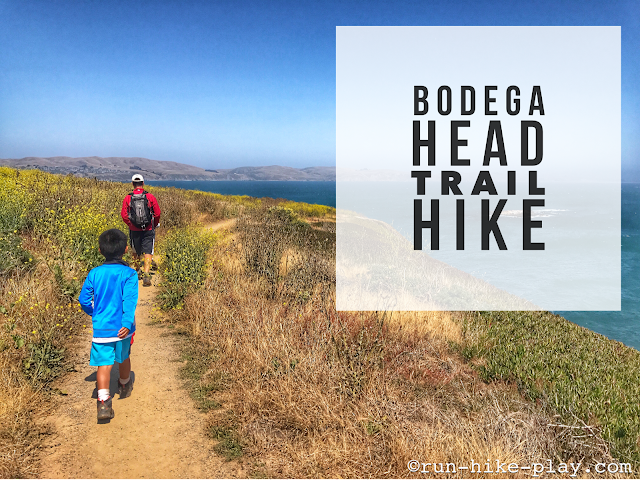 Bodega Head Trail Hike 7/1/17