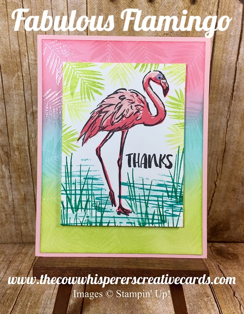 Card, Fabulous Flamingo, Two Step Stamping