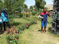 Tanah Gersang Disulap Jadi Taman Sekolah Edukasi Terumbu Karang