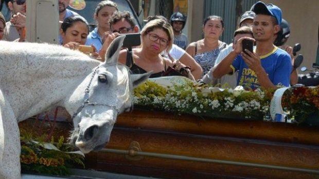 Un caballo despide a su dueño en su entierro
