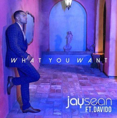 Jay Sean – What You Want ft. Davido [New Song]-mp3made.com.ng