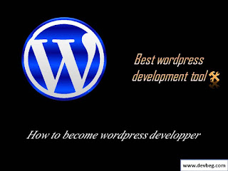 best tool for wordpress theme and plugin development