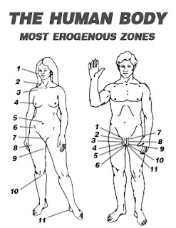 Female Erogenous Zones