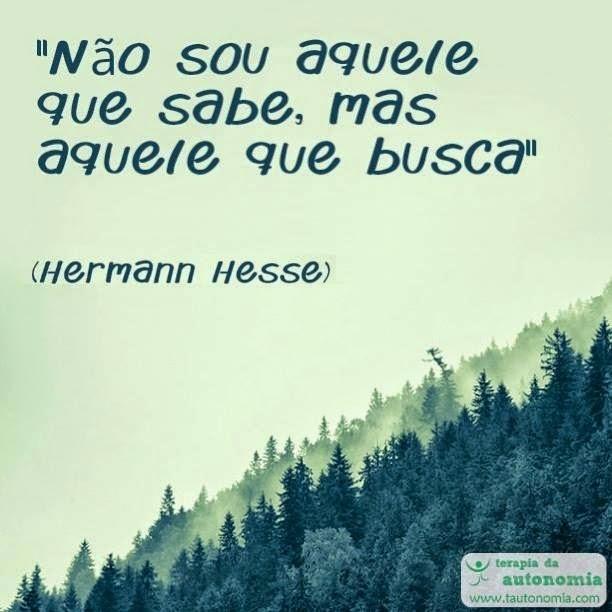Hermann Hesse - Sou aquele que busca