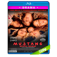 Mustang: Belleza salvaje (2015) BRRip 720p Audio Dual Latino-Turco