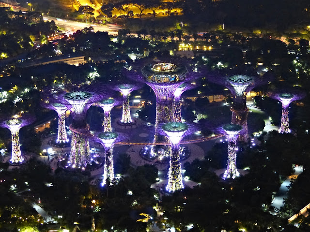 Night view on the Super trees from the Marina Bay Sands Hotel