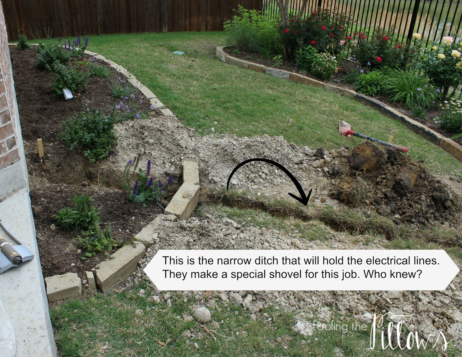 Building a Backyard Pond Part 1 | Poofing the Pillows
