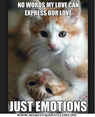 Just emotions