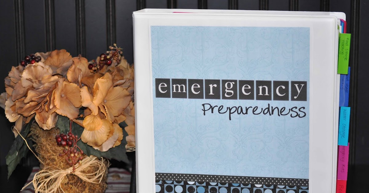 Emergency Preparedness Binder - Chronicles of a Babywise Mom - sample schedules - sample schedule