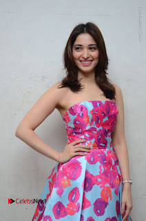 Actress Tamanna Latest Images in Floral Short Dress at Okkadochadu Movie Promotions  0112.JPG