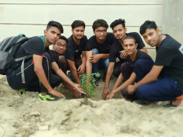 Planting of Duluthon in Greater Faridabad, to make Faridabad clean and smart