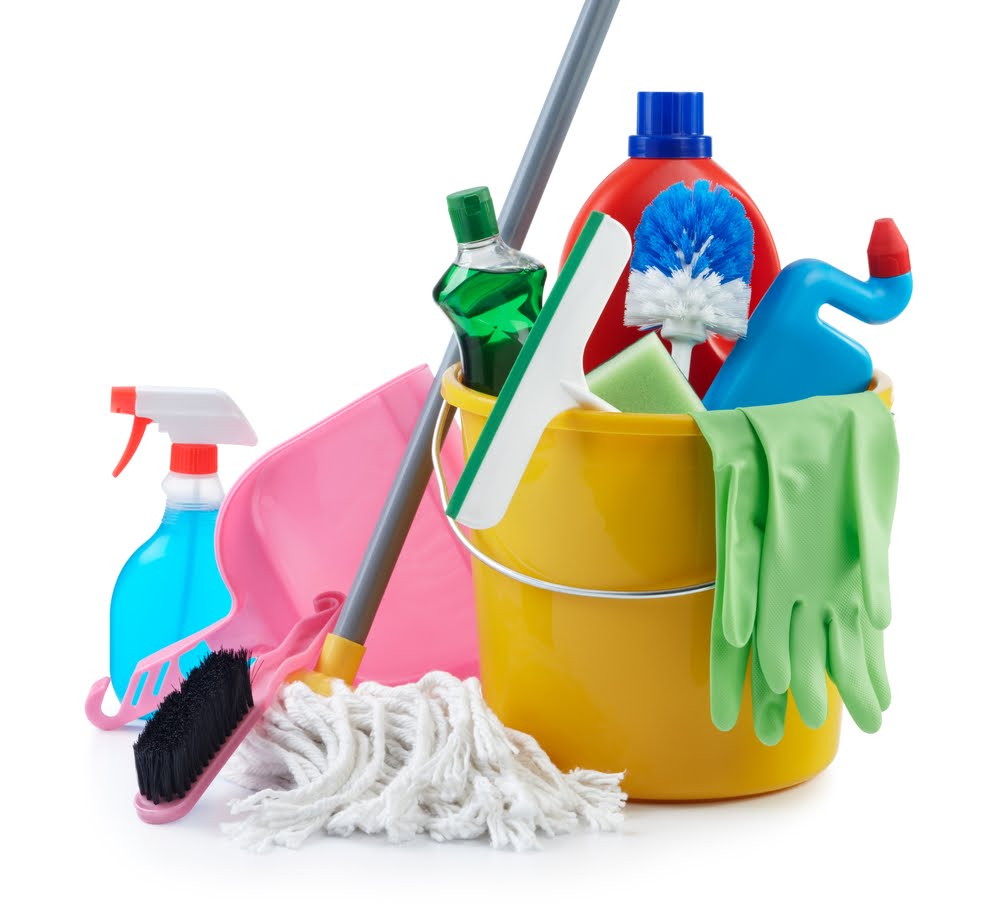 Eco-Buzz Blog: The Dirt On Household Cleaners