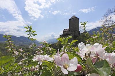 Schloss Tirol im Sommer